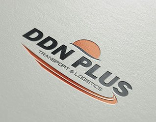 ddn-plus-logo